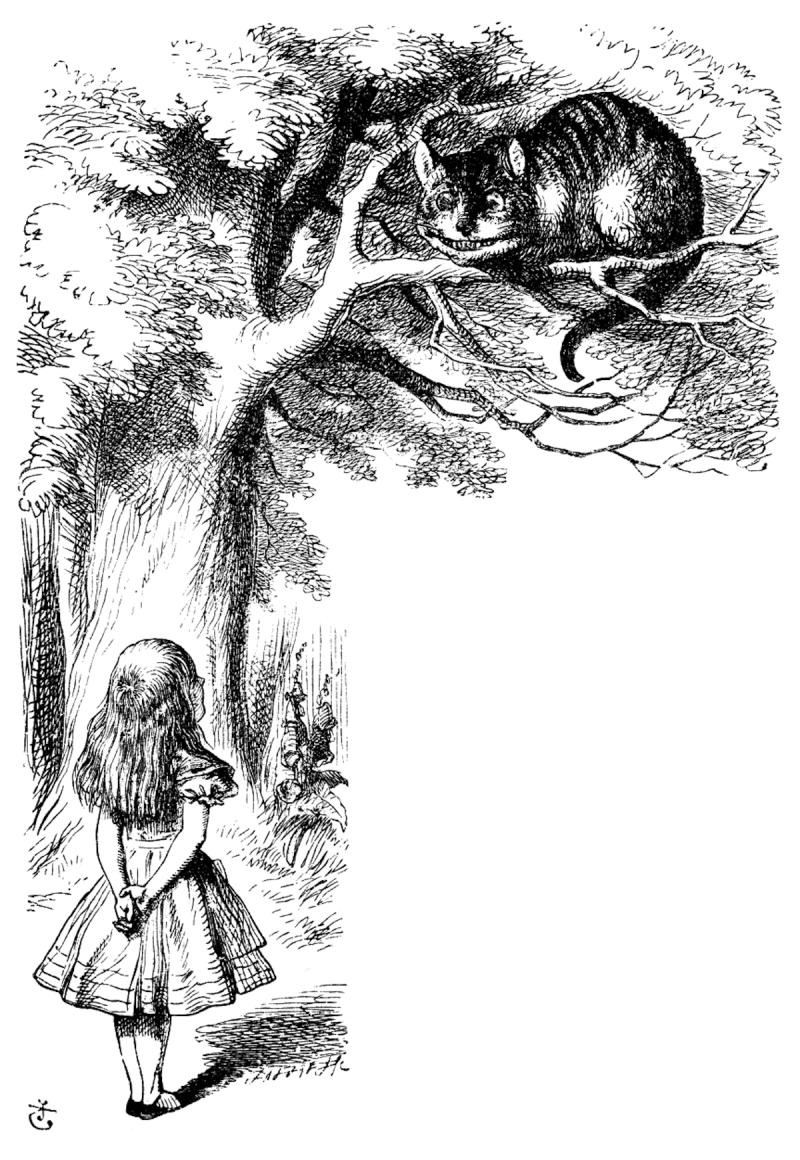 Imagen 7 de 8