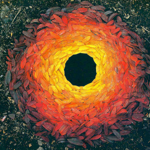 Rowan Leaves Laid Around a Hole