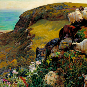 Our english coasts (strayed sheep)