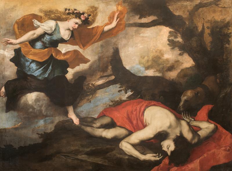 Venere e Adone