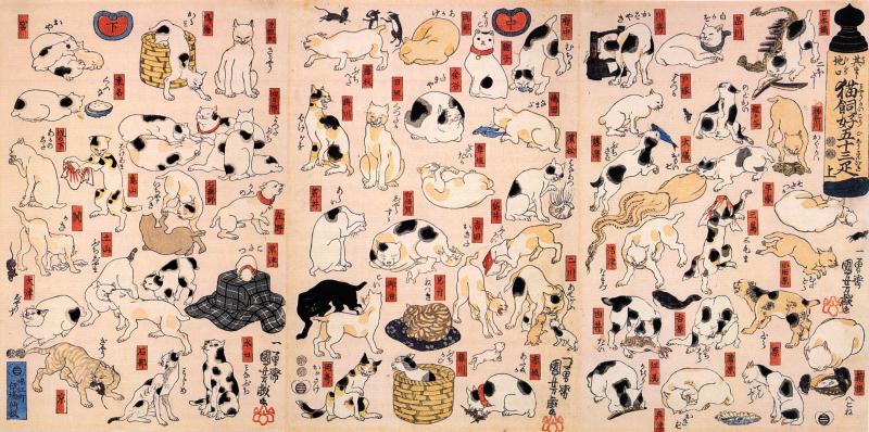 東海道53ヵ所の猫