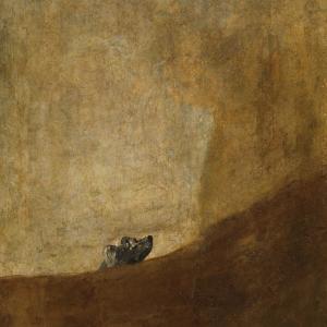 Perro semi-enterrado