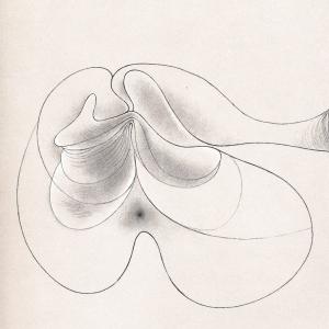 Los sugerentes grabados de Hans Bellmer