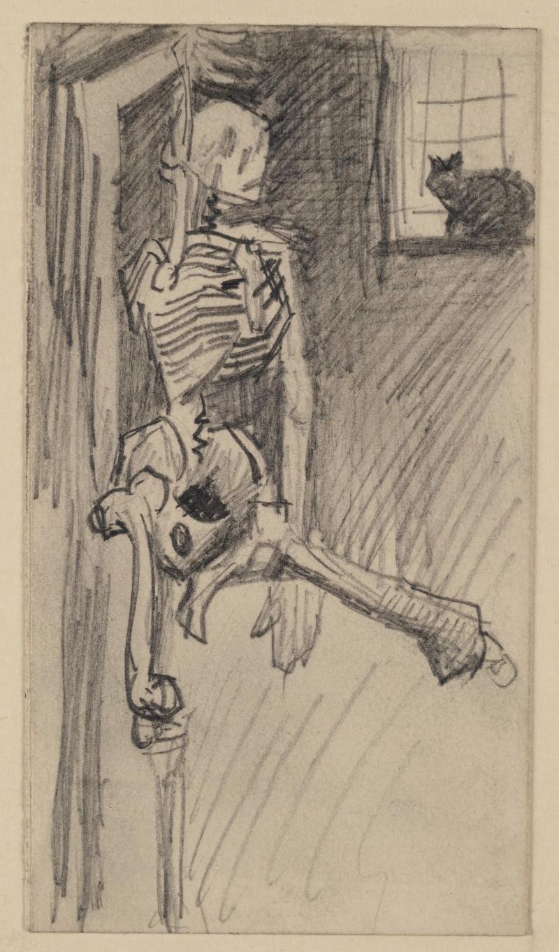 Skelet opknoping met kat