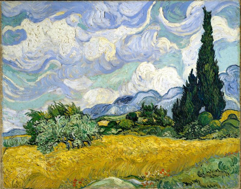 Weizenfeld mit Zypressen